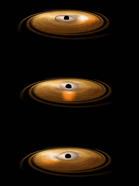 Black Holes Wobble
